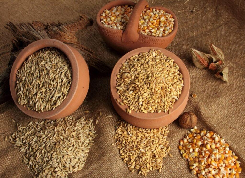 cuencos con diferentes tipos de cereales proteínas vegetales